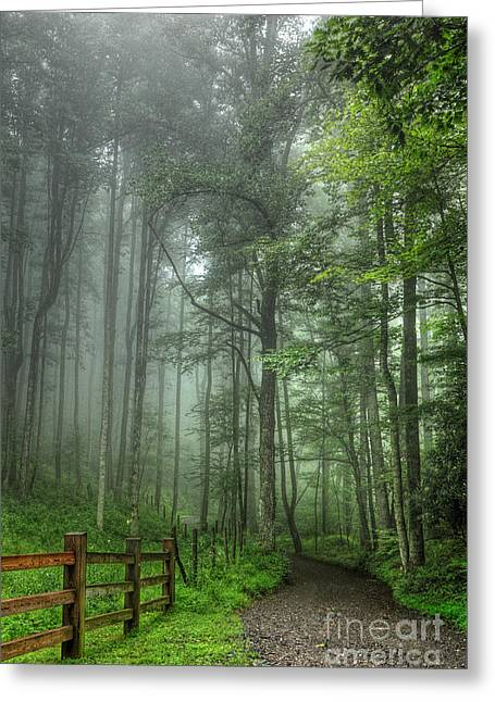 Country Dirt Roads Greeting Cards - Blue Ridge - Trees in Fog Country Road I Greeting Card by Dan Carmichael