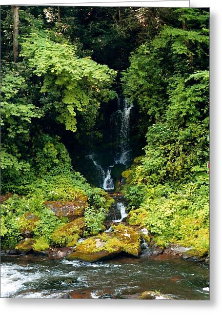 Rush-bed Greeting Cards - Blue Ridge Waterfall Greeting Card by Christean Ramage