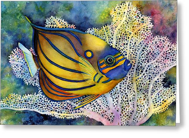 Sea Fan Greeting Cards - Blue Ring Angelfish Greeting Card by Hailey E Herrera
