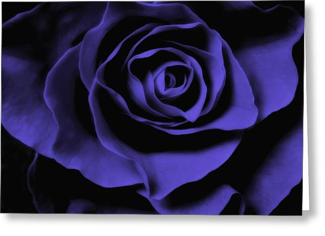 Indigo Blue Violet Greeting Cards - Blue Rose Abstract Art Flower Photograph  Greeting Card by Artecco Fine Art Photography