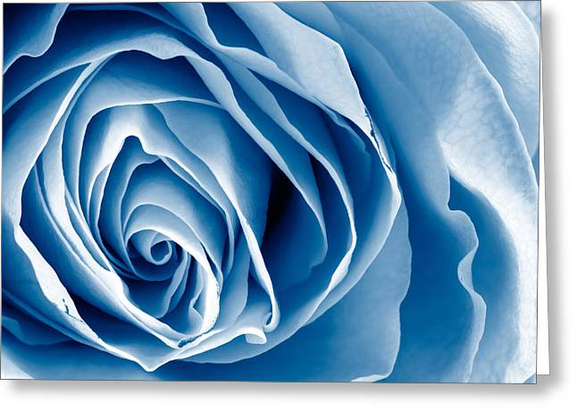 Rose Highlights Greeting Cards - Blue Rose Greeting Card by Nicolas Raymond