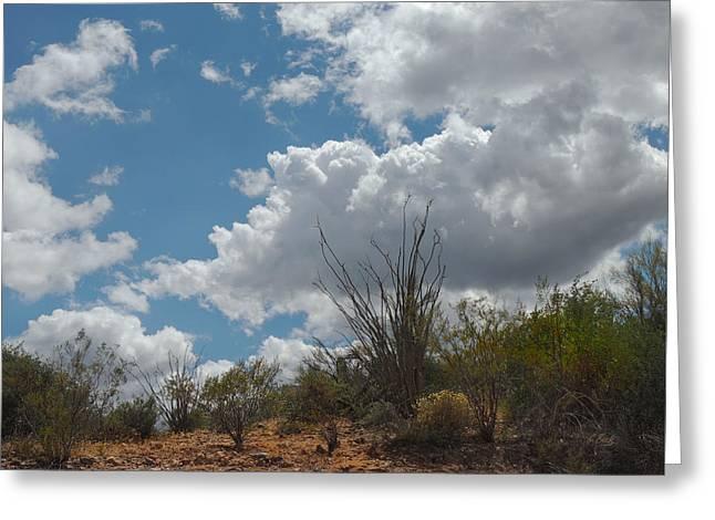 Blue Skies Greeting Card by Gordon Beck