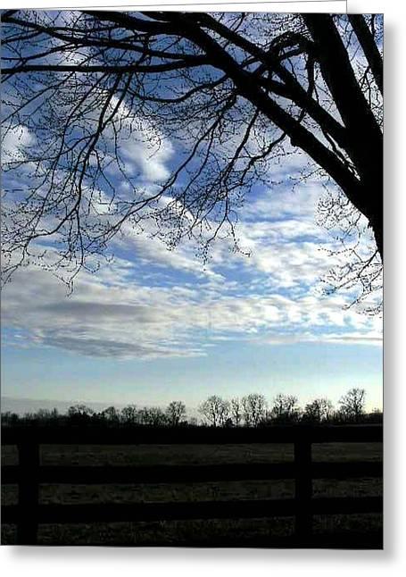 Nature Phots Greeting Cards - Blue Skies Smiling At Me Greeting Card by Fareeha Khawaja