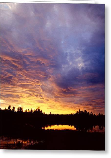 Maine Landscape Digital Greeting Cards - Blue Sky  Greeting Card by Amanda Kiplinger