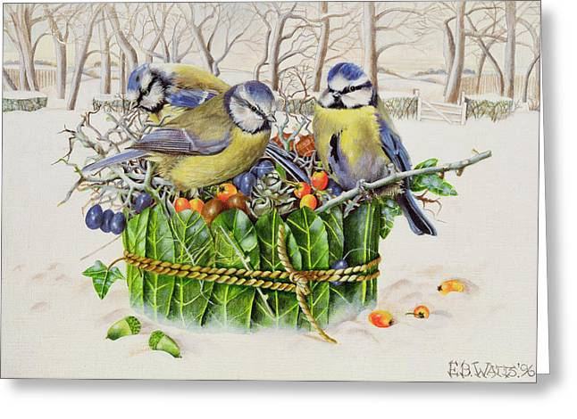 Winter Scenery Greeting Cards - Blue Tits in Leaf Nest Greeting Card by EB Watts