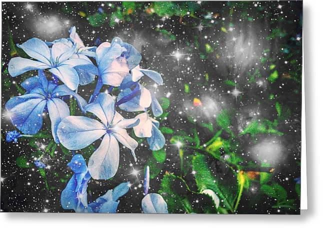 Twinkle Greeting Cards - Blue Twilight in Bunches Greeting Card by Marisela Mungia