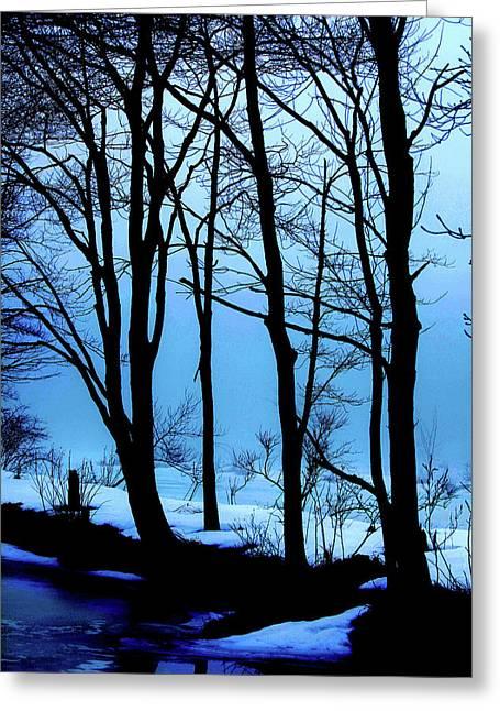 Blue Woods Greeting Card by Karol Livote