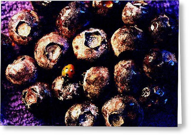 Abstract Blueberries Greeting Cards - Blueberries and Ladybug Greeting Card by Nancy Mueller
