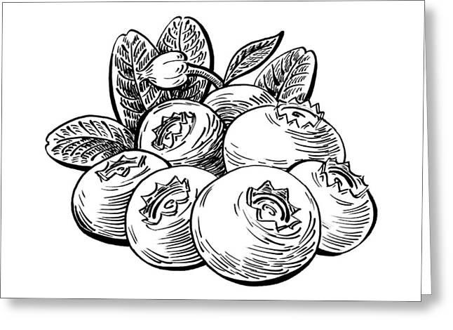 Blueberries Drawing Greeting Cards - Blueberries Image Greeting Card by Irina Sztukowski