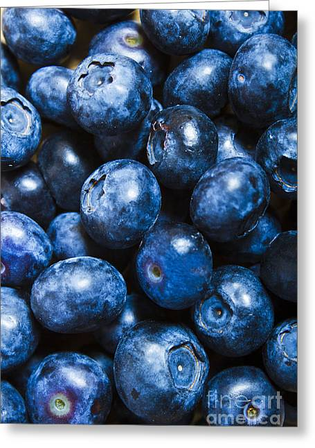 Blueberrys Background Greeting Card by Jorgo Photography - Wall Art Gallery