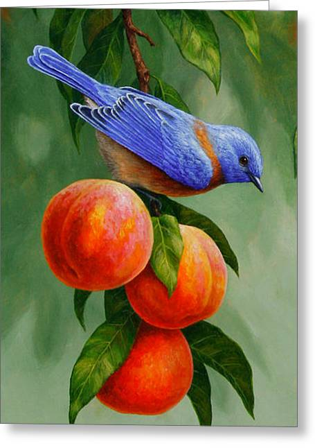 Bird Song Greeting Cards - Bluebird and Peach Tree iPhone Case Greeting Card by Crista Forest
