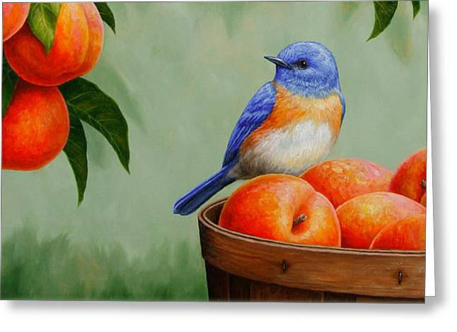 Wild Orchards Greeting Cards - Bluebird Fruit Basket iPhone Case Greeting Card by Crista Forest