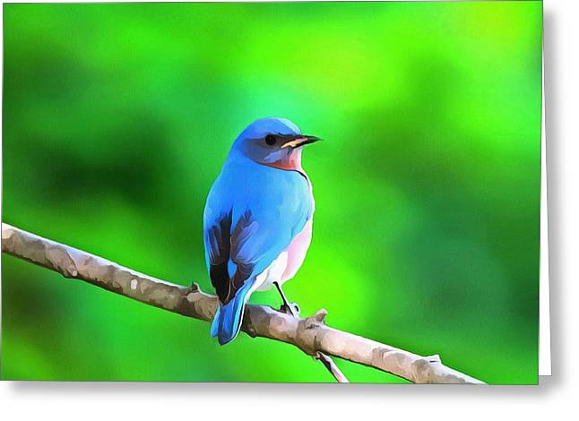 Bird On Tree Mixed Media Greeting Cards - Bluebird On Summer Green Greeting Card by Dan Sproul