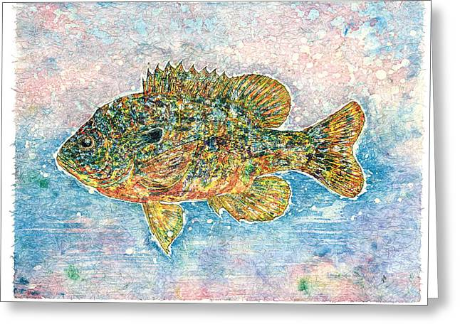Fishing Creek Greeting Cards - Bluegill Greeting Card by Nick Cantrell