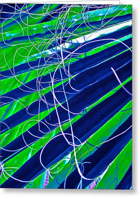 Bluegreen Palm Fun Greeting Card by Gwyn Newcombe