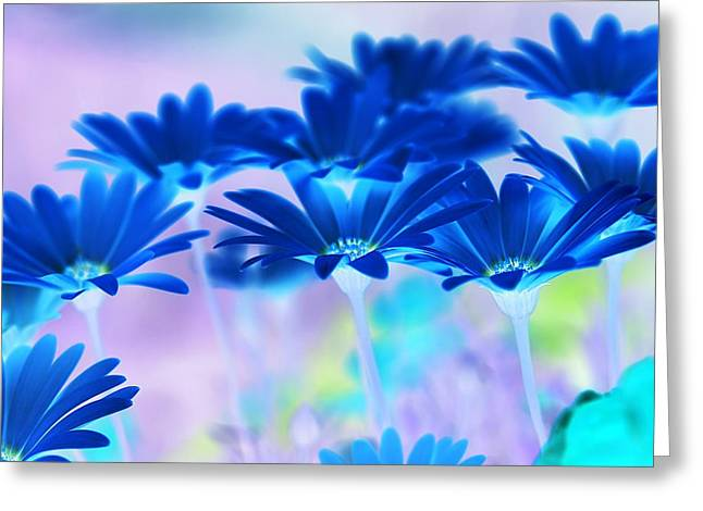 Abstract Digital Greeting Cards - Bluemination Greeting Card by Robin Webster
