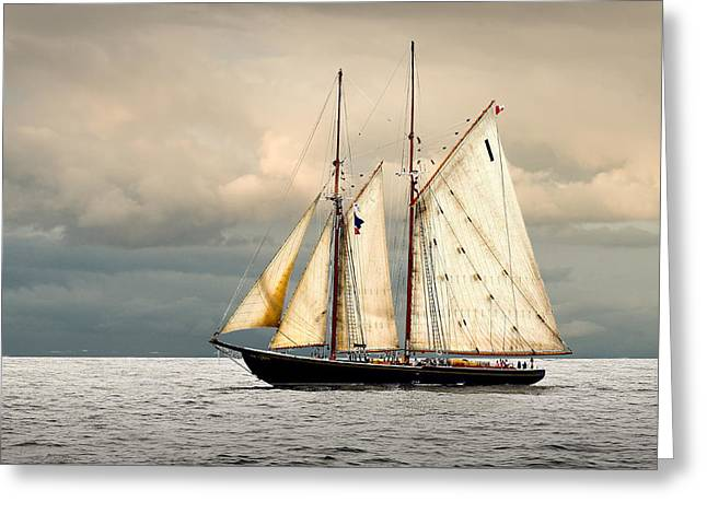 Tall Ship Greeting Cards - Bluenose Greeting Card by Fred LeBlanc