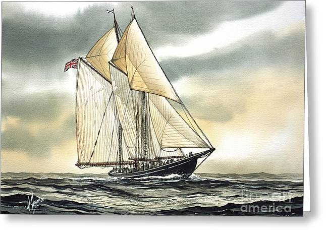 Tall Ship Canvas Greeting Cards - Bluenose  Greeting Card by James Williamson