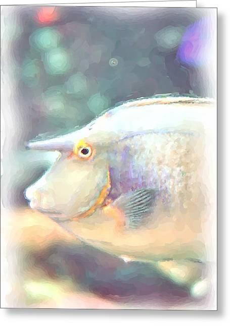 Aquatic Greeting Cards - Bluespine Unicorn Fish Greeting Card by A R Williams