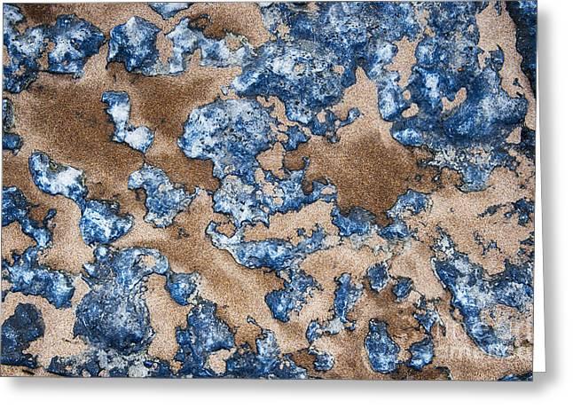 Bluestone Greeting Card by Tim Gainey