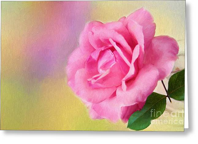 Mother Gift Greeting Cards - Blush Greeting Card by Darren Fisher
