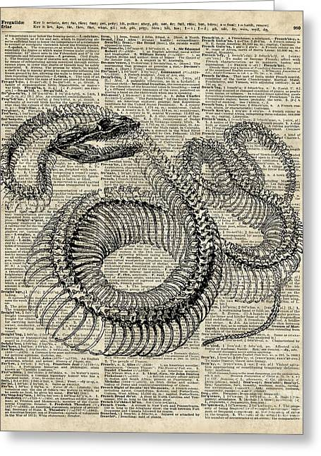 Digital Media Drawings Greeting Cards - Boa Snake Skielet an dictionary page Greeting Card by Jacob Kuch