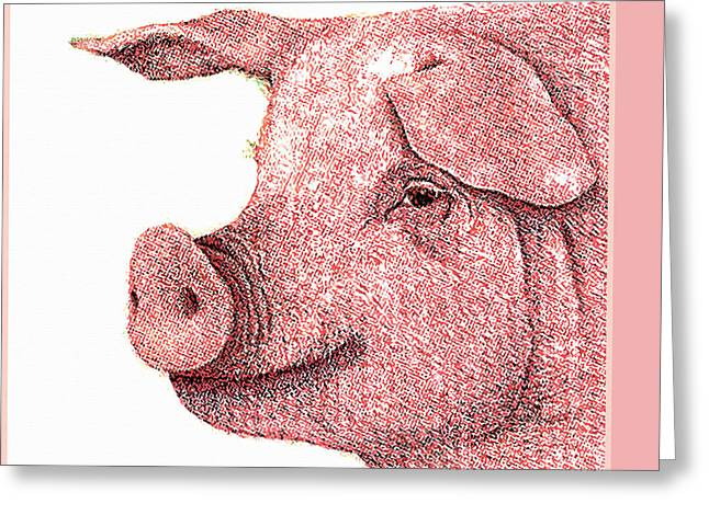 Medical Greeting Cards - Boar Greeting Card by Lanjee Chee