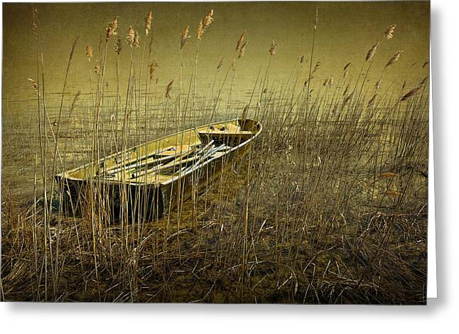 Randy Greeting Cards - Boat among the Reeds Greeting Card by Randall Nyhof
