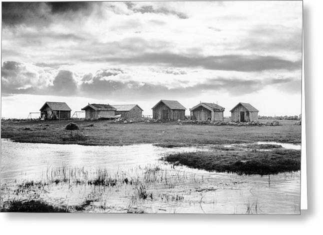 House By The Sea Greeting Cards - Boat houses by the shore in Kallahamn Harbor Greeting Card by Celestial Images