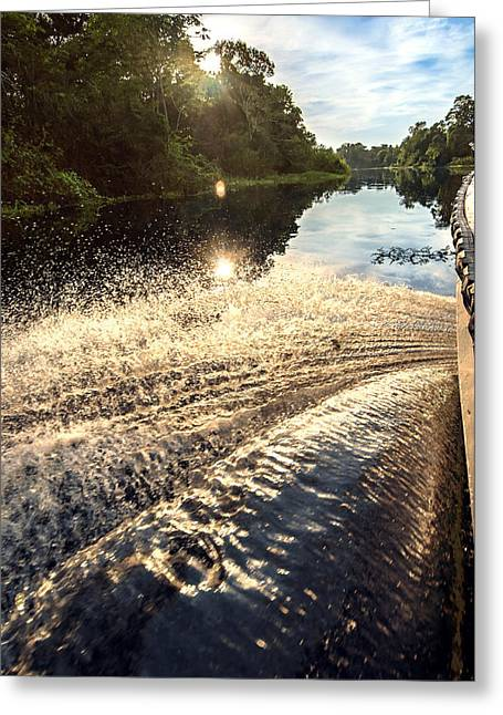 Mangrove Forest Greeting Cards - Boat on a river in the Amazon Rainforest Peru Greeting Card by Eduardo Huelin