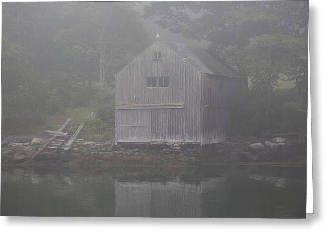 Old Maine Houses Greeting Cards - Boathouse In Fog  New Harbor, Maine Greeting Card by Lynn Stone
