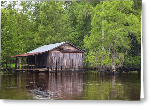 """caddo Lake"" Greeting Cards - Boathouse on Caddo Lake 1 Greeting Card by Rob Greebon"