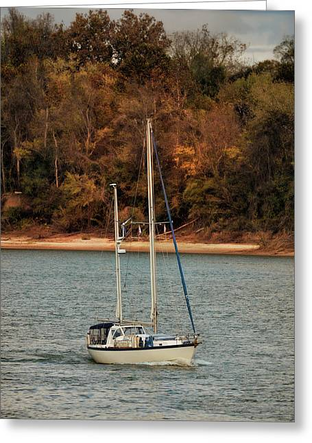 Boating In Autumn Greeting Card by Jai Johnson