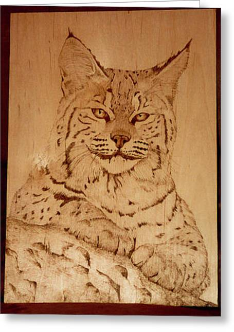 Bobcats Pyrography Greeting Cards - Bobcat Greeting Card by Angel Abbs-Portice