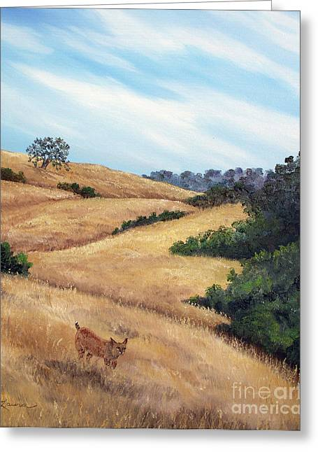 Bobcats Greeting Cards - Bobcat at Rancho San Antonio Greeting Card by Laura Iverson