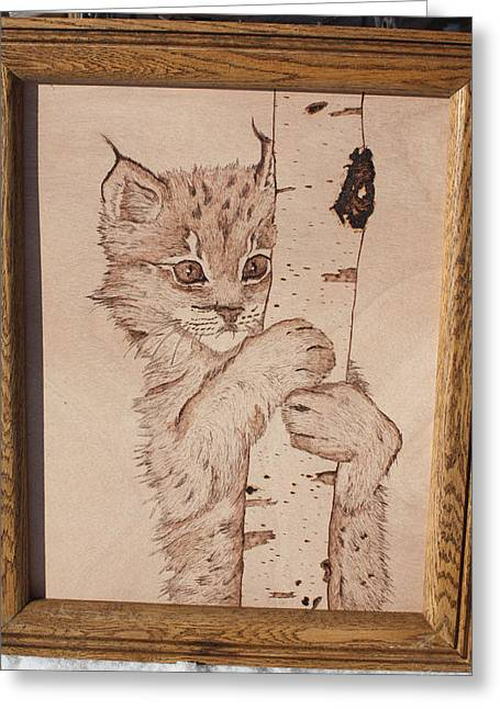 Bobcats Pyrography Greeting Cards - Bobcat Kitten Curiosity Greeting Card by Angel Abbs-Portice