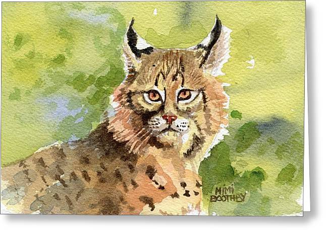 Recently Sold -  - Bobcats Greeting Cards - Bobcat Greeting Card by Mimi Boothby