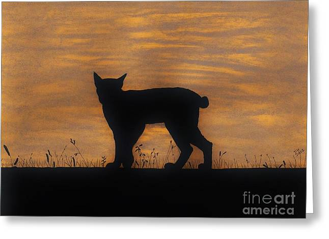 Bobcat Drawings Drawings Greeting Cards - Bobcat - Sunset Greeting Card by D Hackett