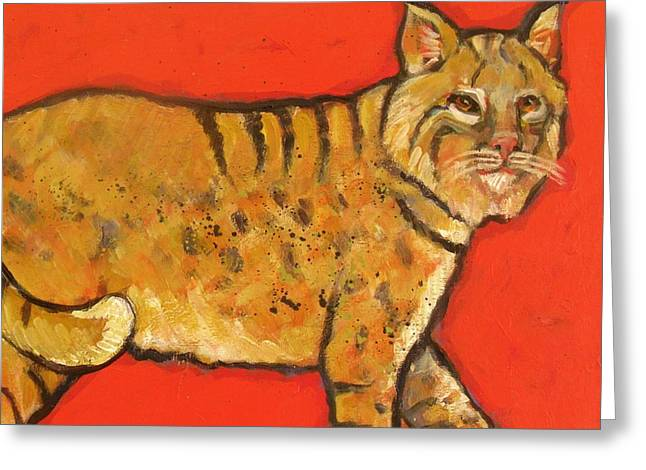 Bobcat Watching Greeting Card by Carol Suzanne Niebuhr