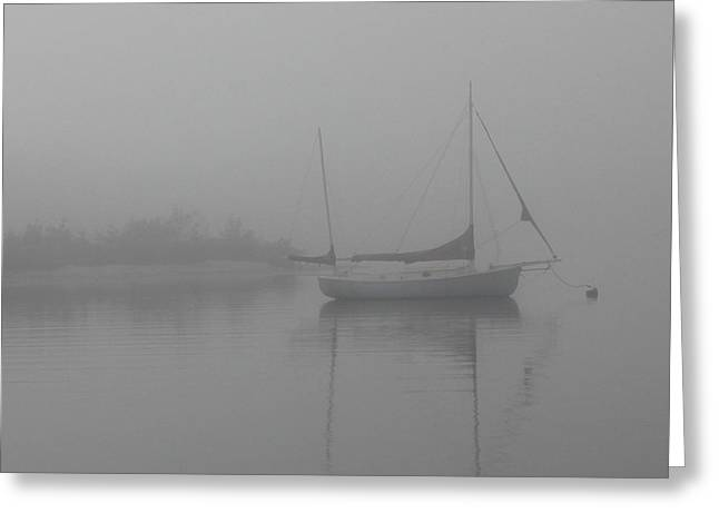 Sailboats In Water Greeting Cards - Boca Fog Greeting Card by Mark Cyr