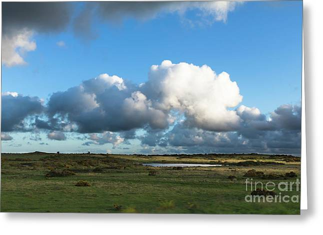 Bodmin Moor Cornwall Greeting Card by Terri Waters