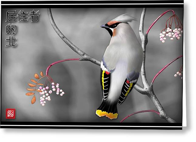 Cedar Waxwing Greeting Cards - Bohemian Waxwing Greeting Card by John Wills