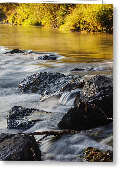 Reflections In River Greeting Cards - Boise River Autumn morning Boise Idaho Greeting Card by Vishwanath Bhat