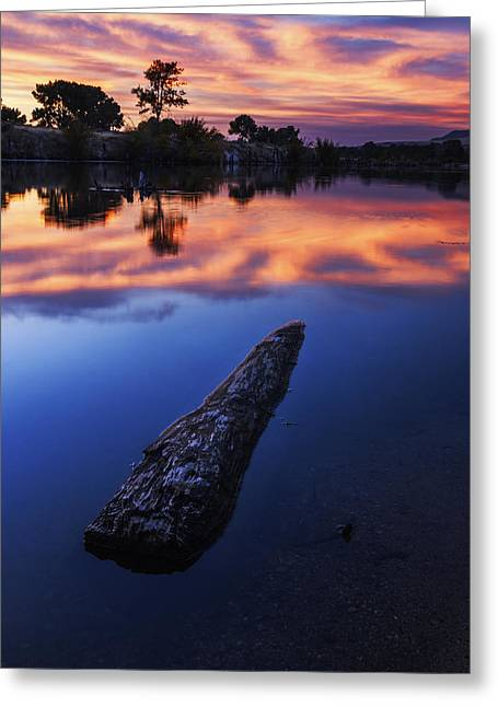 Reflection Of Trees In Water Greeting Cards - Boise River Sunset Serenity Greeting Card by Vishwanath Bhat