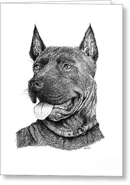 Bolo Black And White Drawing With Pen And Ink Of A Dog Greeting Card by Mario Perez