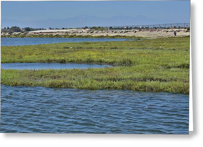 Wildlife Refuge. Greeting Cards - Bolsa Chica Wetlands I Greeting Card by Linda Brody