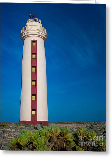 Bonaire Greeting Cards - Bonaire Lighthouse Greeting Card by Doug Sturgess