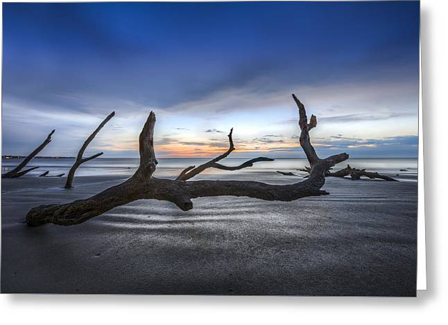 Abstract Beach Landscape Greeting Cards - Bones Beach Greeting Card by Debra and Dave Vanderlaan
