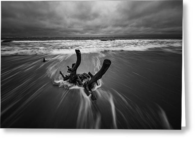 Edge Greeting Cards - Boneyard Beach at Folly Beach Greeting Card by Rick Berk