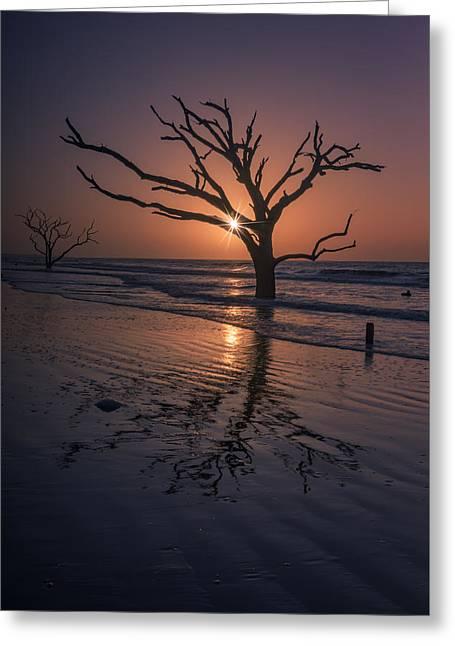 Boneyard Glow - Botany Bay Greeting Card by Rick Berk